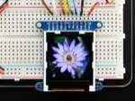 "Adafruit 1.44"" Color TFT LCD Display + MicroSD breakout ST7735R"