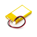 Polymer Lithium Ion Batteries - 850mAh